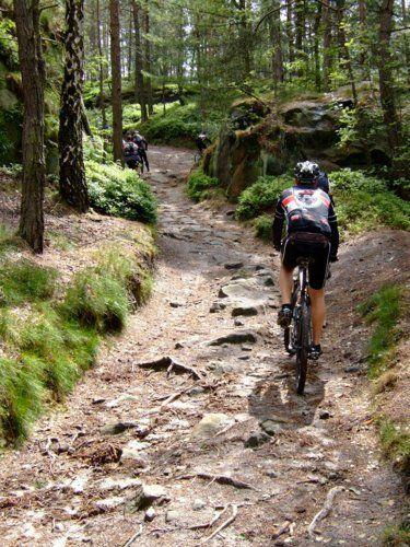 Eule im Trail bergauf